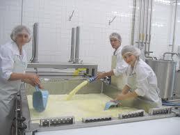 Характеристика молочных продуктов