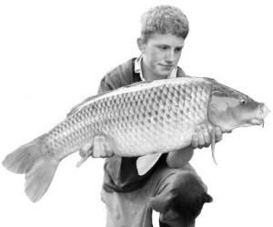 Как определить свежесть рыбы?