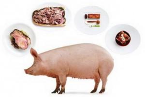 Что приготовить из мяса свинины